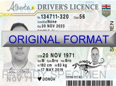 buy alberta scannabler fake id and fake driver license