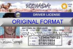 Nevada Fake ID Template Large