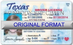 Texas Fake ID Template Large
