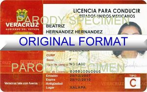 fake mexico driver license fake id mexico
