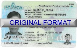 NEW BRUNSWICK DRIVER LICENSE ORIGINAL FORMAT, DESIGN SPECIFICATIONS, NOVELTY SECURITY CARD PROFILES, IDENTITY, NEW SOFTWARE ID SOFTWARE NEW BRUNSWICK driver