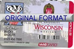 novelty id, novelty id card, driver license novelty WISCONSIN UNIVERSITY card, new identity software design custom