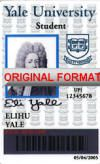 yale identity tudent id card design, novelty id yale student card software identification yale